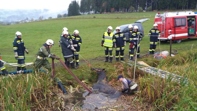In Sonnstein wurde ein Pferd aus einem Teich gerettet. (Bild: Feuerwehr)