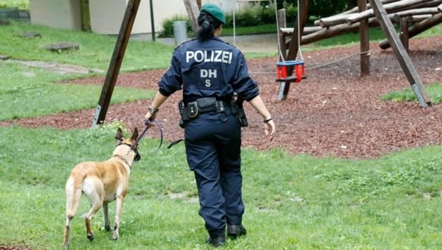 Auch mit Hunden wurde nach der Abgängigen gesucht (Bild: MARKUS TSCHEPP (Symbolbild))