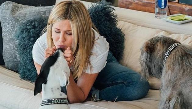 Jennifer Aniston mit ihren Hunden (Bild: Instagram.com/Jennifer Aniston)