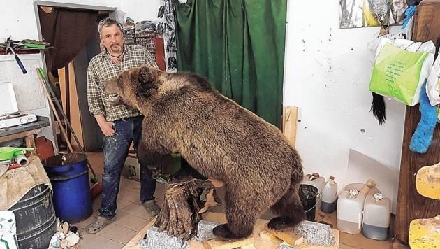 Der Braunbär stellt ein Meisterstück des Präparatorprofis Eric Leitner dar. (Bild: Eric Leitner)