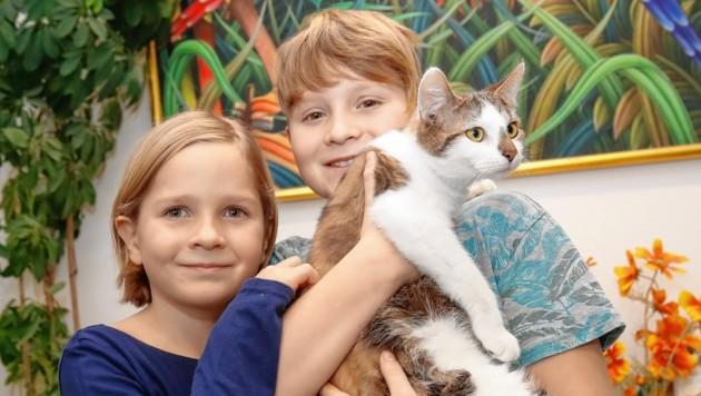 Die ausgesetzten Katzen fanden eine Familie - Anna (6) und Moritz (9)!