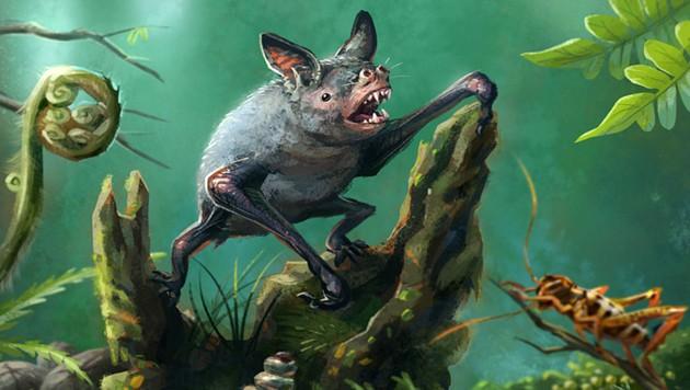 Künstlerische Illustration: So könnte die 40 Gramm schwere Fledermaus ausgesehen haben.