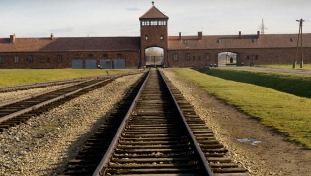 (Bild: Stiftung Auschwitz-Birkenau)