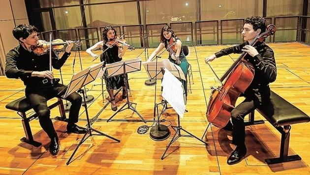 Quatuor Tchalik aus Frankreich gewinnt den Internationalen Mozartwettbewerb (Bild: Markus Tschepp)