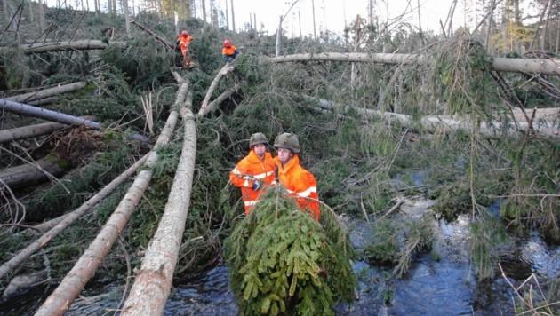 Bereits einen Tag nach dem Sturm rückten Bundesheersoldaten zur Hilfe beim Aufräumen an (hier in Hirschegg)