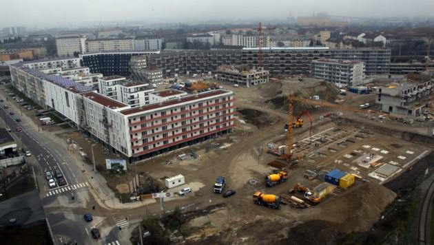 Wohnbau in Linz (Bild: Kronen Zeitung/ Chris Koller)