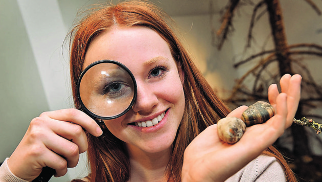 Hobby-Forscher nehmen die Natur im Biologiezentrum unter die Lupe. (Bild: Museum Total)