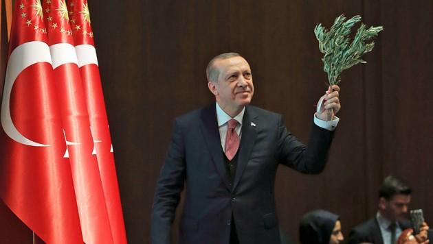 Präsident Recep Tayyip Erdogan mit einem Olivenzweig: Dieser symbolisiert normalerweise Frieden. In Nordsyrien steht er für Tod und Zerstörung. (Bild: AP)