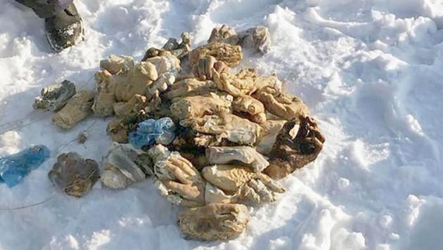Die abgehackten Hände waren in einem Sack im Schnee abgelegt worden.