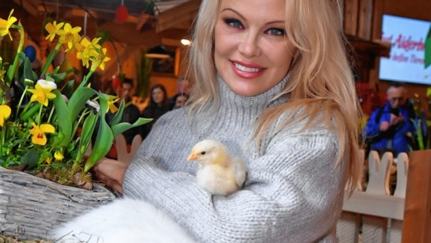 Pamela Anderson am Ostermarkt auf Gut Aiderbichl (Bild: Kerstin Joensson)