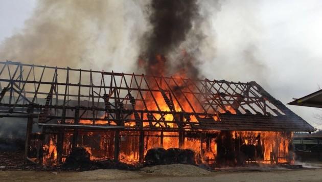 Die Scheune des Reitstalls stand in Vollbrand und konnte nicht mehr gerettet werden. (Bild: fotokerschi.at)