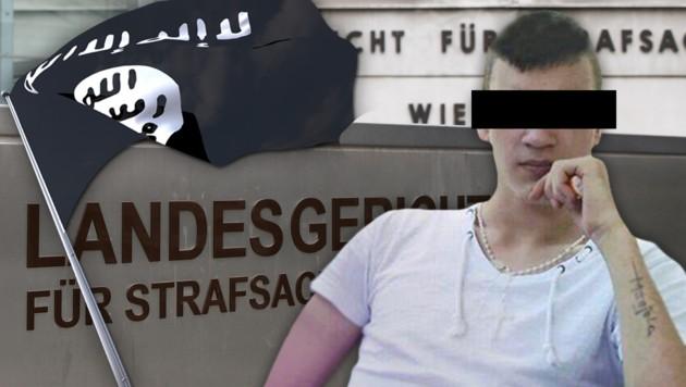 """(Bild: APA/HANS PUNZ, """"Krone"""", thinkstockphotos.de, krone.at-Grafik)"""
