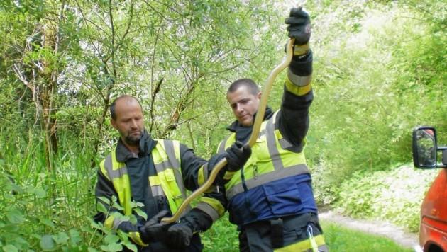 (Bild: Feuerwehr Villach)