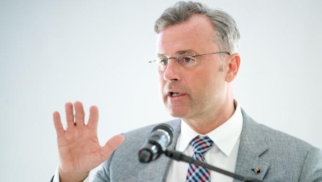 Norbert Hofer, FPÖ (Bild: APA/Georg Hochmuth)
