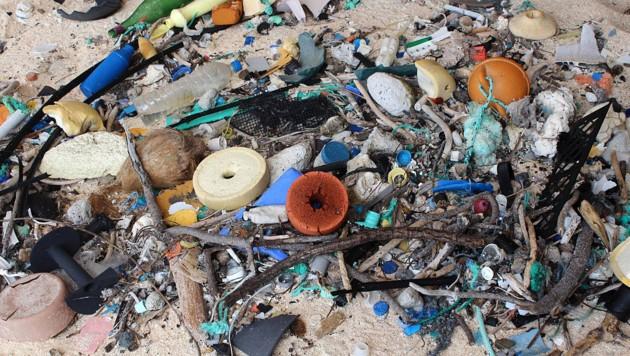 Kunststoffmüll an einem Strand von Henderson Island (Bild: APA/dpa/Jennifer Lavers)
