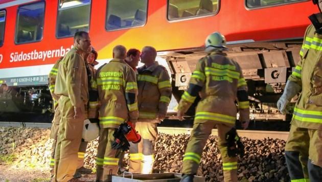 23 Feuerwehrleute aus Hallwang halfen den Passagieren beim Umstieg in den Ersatzzug. (Bild: Markus Tschepp)