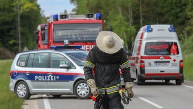 Die Einsatzkräfte schützten sich vor den Bienenstichen. (Bild: Pressefoto Scharinger © Daniel Scharinger)