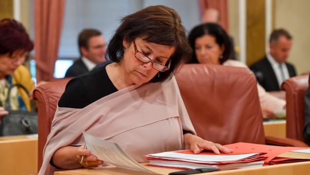 Landesrätin Birgit Gerstorfer von der SPÖ. (Bild: Harald Dostal)
