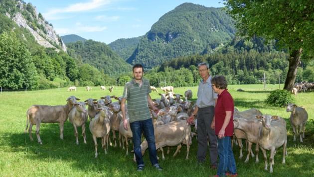 Die Züchterfamilie Klaus, Johann und Christine Kaltenbrunner bangt um ihre Schafherde, seit sich offenbar ein Wolf in der Gegend aufhält. (Bild: © Jack Haijes)