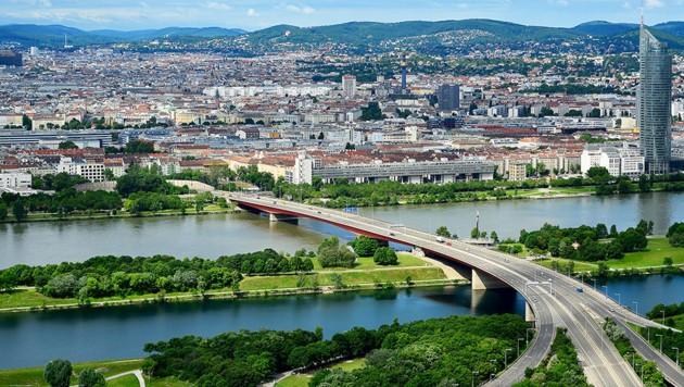 Die Donau bei Wien (Bild: stock.adobe.com, krone.at-Grafik)