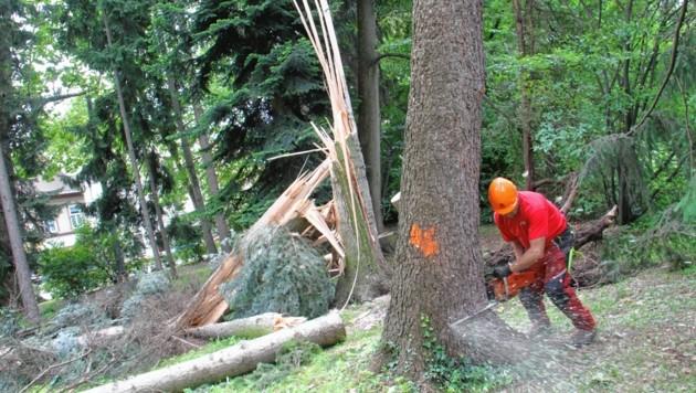 Arbeiten im Grazer Stadtpark dauern noch länger - zumindest teilweise Sperren bleiben bis kommende Woche. (Bild: Jauschowetz Christian)