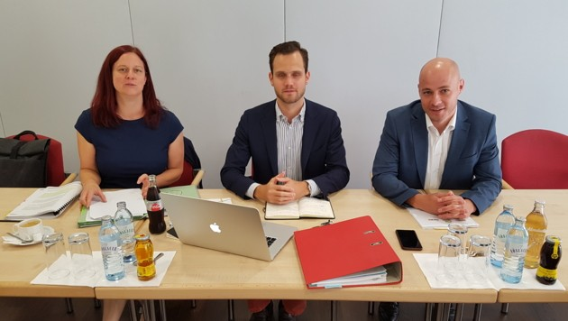 "Ursula Roschger (Grüne), Felix Eypeltauer (NEOS), Martin Hajart (ÖVP): Die drei Säulen der ""Aufklärer-Allianz"" in der Linzer Aktenaffäre."