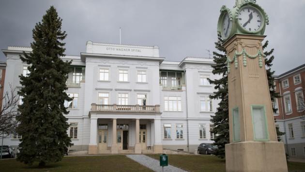 Das Otto-Wagner-Spital in Wien-Penzing (Bild: APA/GEORG HOCHMUTH)