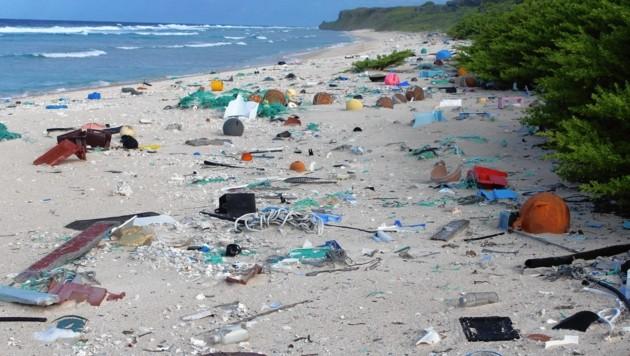 Wissenschaftler fanden am Strand von Henderson Island 38 Millionen Stück Müll, der angeschwemmt wurde. Die Insel ist unbewohnt. (Bild: Jennifer Lavers)