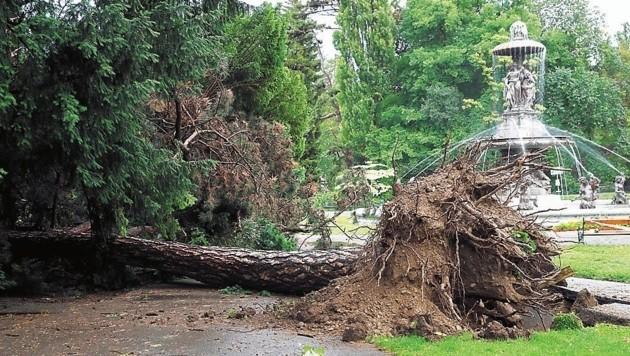 Im Orkan vom 12. Juni verstarb ein Mann im Grazer Stadtpark. (Bild: Juergen Radspieler)
