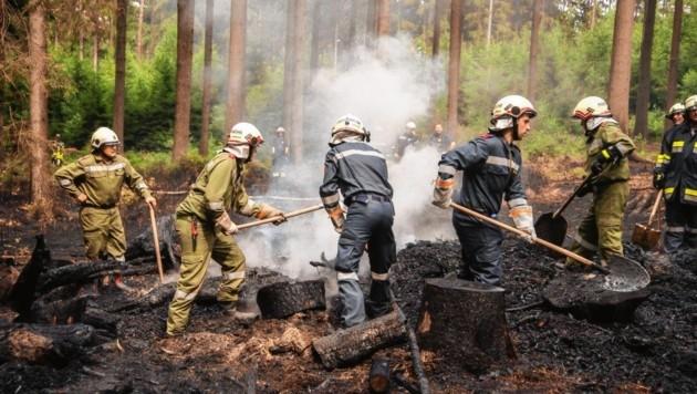 In voller Montur kämpften Feuerwehr-Leute am Schauberg (Niederösterreich) die Glutnester nach einem Waldbrand nieder.
