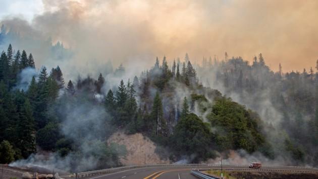 Das Carr-Feuer bei Whiskeytown (Bild: AFP)