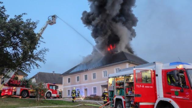 250 Feuerwehrleute löschten (Bild: FOTOKERSCHI.AT/FF Rohrbach)