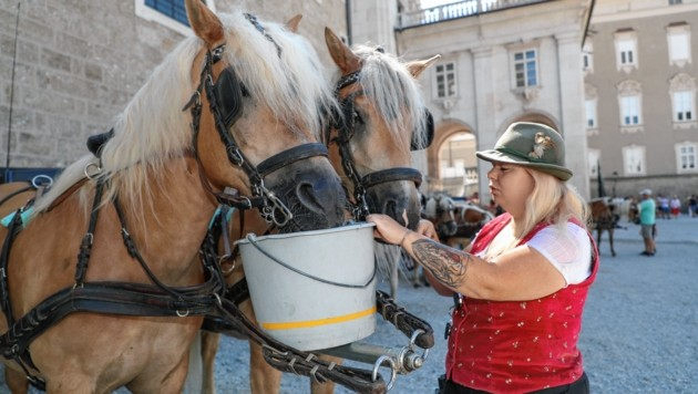 Fiakerin Denise von der Fiakerei Winter versorgt ihre Pferde mit Wasser (Bild: www.neumayr.cc)