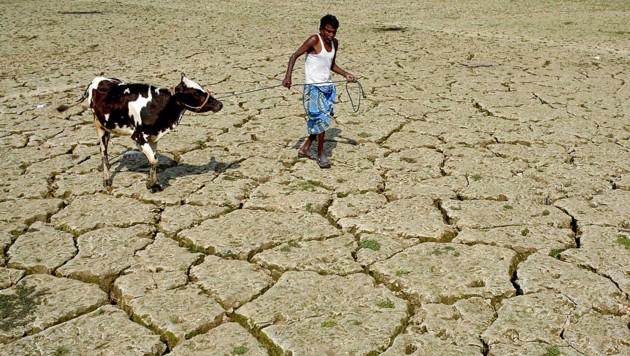 (Bild: APA/AFP/ARINDAM DEY)