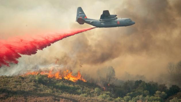 Bisher konnten lediglich 30 Prozent der derzeit wütenden Waldbrände eingedämmt werden. (Bild: AP)