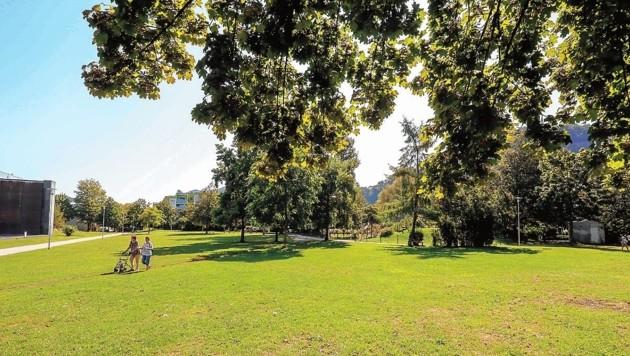 Der so gut wie leer gefegte Dr. Hans-Lechner-Park in Schallmoos. Im Moment haben die menschen Angst, trotz Sonnenschein finden sich kaum Parkbesucher ein. (Bild: Markus Tschepp)