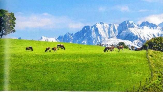 Alpine Landschaft im Pinzgau gut für Nutztierhaltung. (Bild: auphoto)