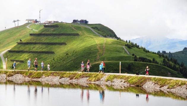 Das Wandern am Asitz in Leogang ist sehr beliebt. (Bild: Melanie Hutter)