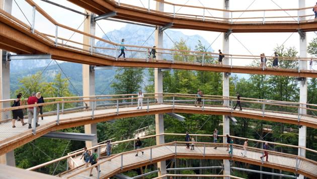 Der Baumwipfelpfad samt Aussichtsturm (Foto) ist ein beliebter Publikumsmagnet geworden. (Bild: Wolfgang Spitzbart)