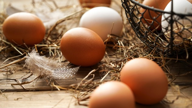Indonesien lässt zehn Millionen Eier vernichten