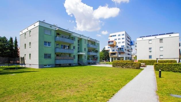 """Der Architektur-Bewerb für das Projekt """"Lanserhofwiese"""" der gswb wird bald ausgeschrieben (Bild: Neumayr)"""