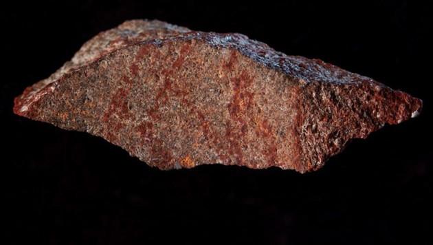 Das älteste gezeichnete Symbol der Menschheitsgeschichte (Bild: Nature/Craig Foster)