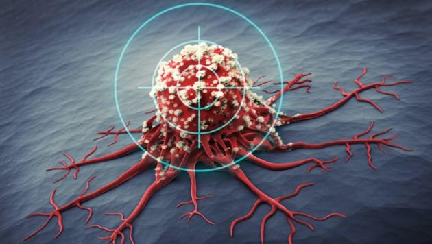 Studie: Aminosäure-Diät kann Krebswachstum hemmen