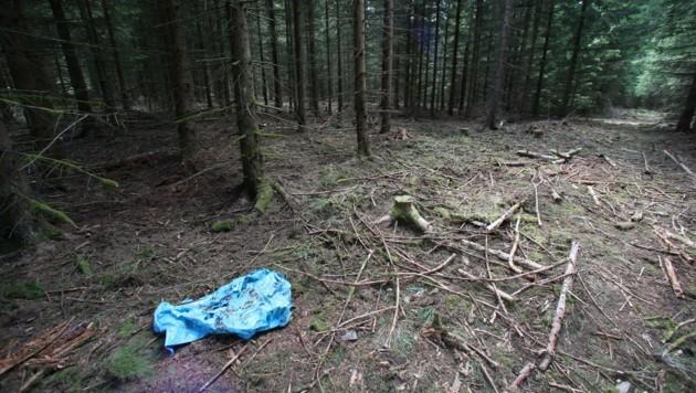 Ein blauer Kunststoff-Sack liegt in einem Waldstück in Thüringen, in dem auch Skelettteile von Peggy gefunden worden waren. (Bild: APA/dpa/Daniel Karmann)