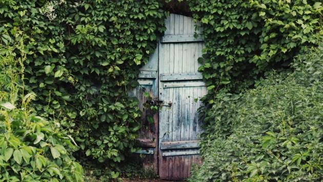 (Bild: ©kosobu - stock.adobe.com)