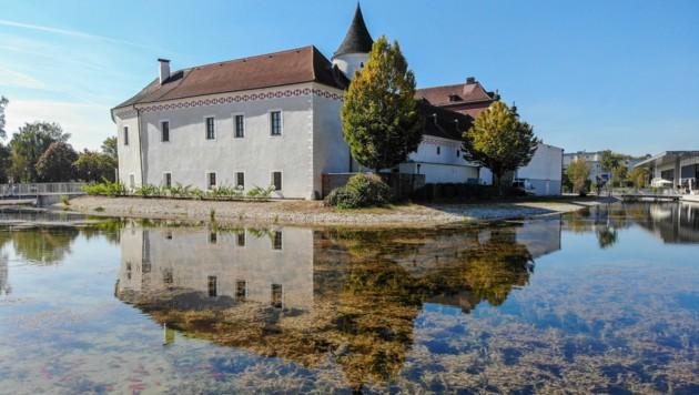 Vor drei Jahren wurde der Wassergraben als Aufwertung für das Schloss Traun errichtet. Nun sorgen zu viele Pflanzen für Ärger.