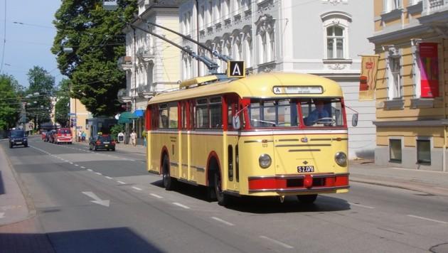 Salzburg Oldtimer Bus, Obus