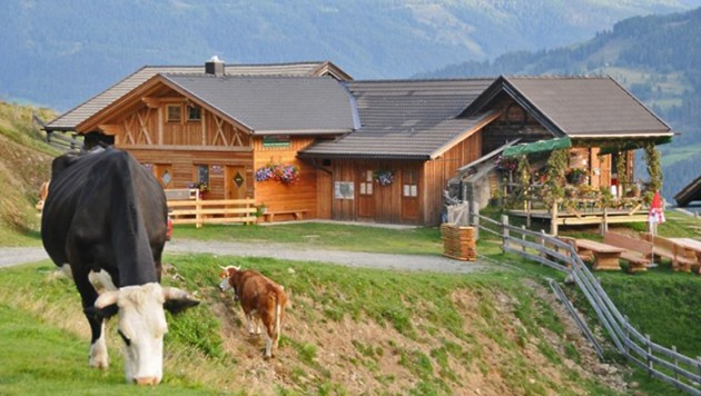 """Die Almkäserei """"Lainacher Kuhalm wird nur von Juni bis Anfang September bewirtschaftet. (Bild: Agrarwirtschaft Lainach)"""