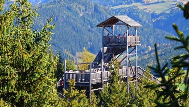 Der in den Jahren 2008/2009 errichtete Wipfelwanderweg in Rachau lockt Touristen nach Rachau - und beschäftigt bis heute das Gericht.