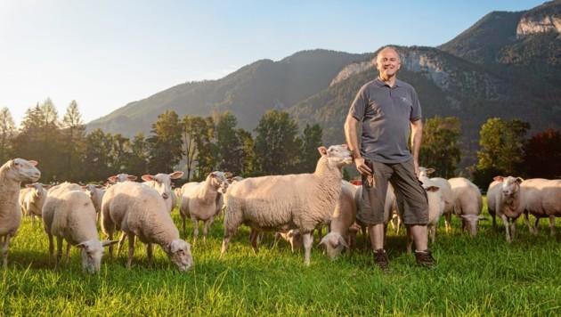 Bio-Landwirt Sepp Eisl mit seinen geliebten Schafen in Abersee vor der Traumkulisse des Salzkammerguts.